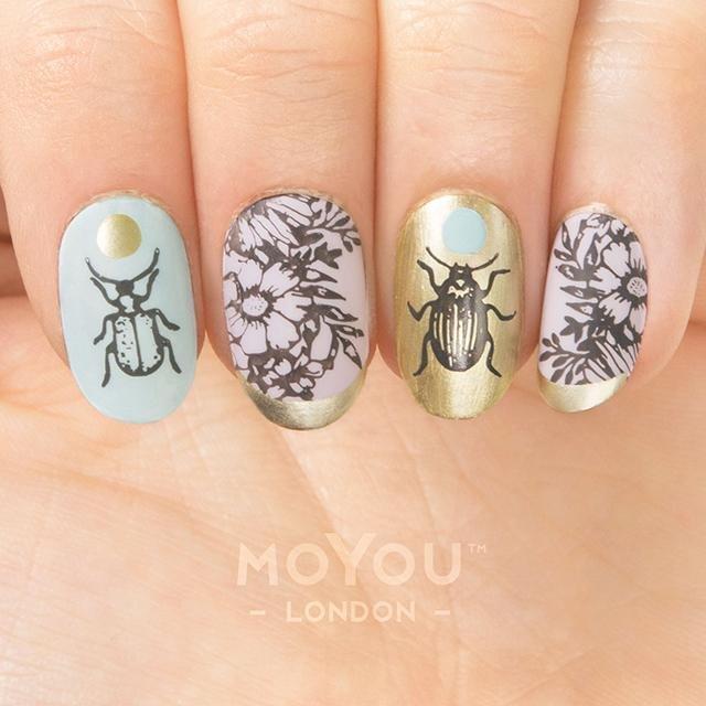Botanical 04
